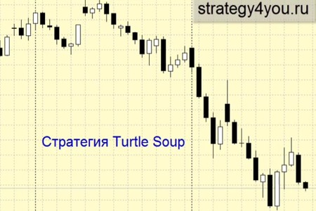 Видеоурок 'Turtle Soup'